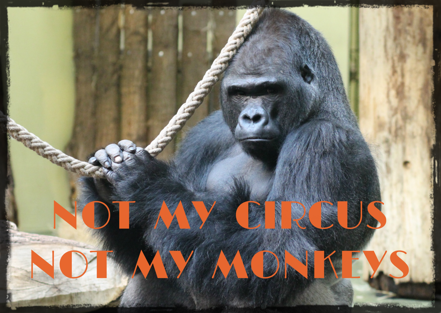 Not my circus - not my monkeys
